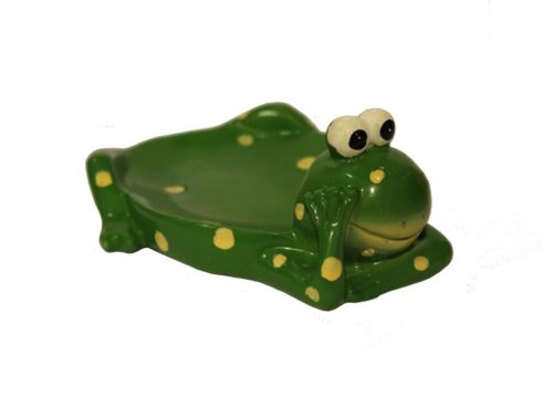 ranocchia per il bagno, frog